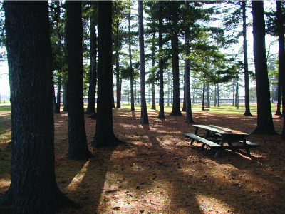 Peshtigo Badger Park Campground